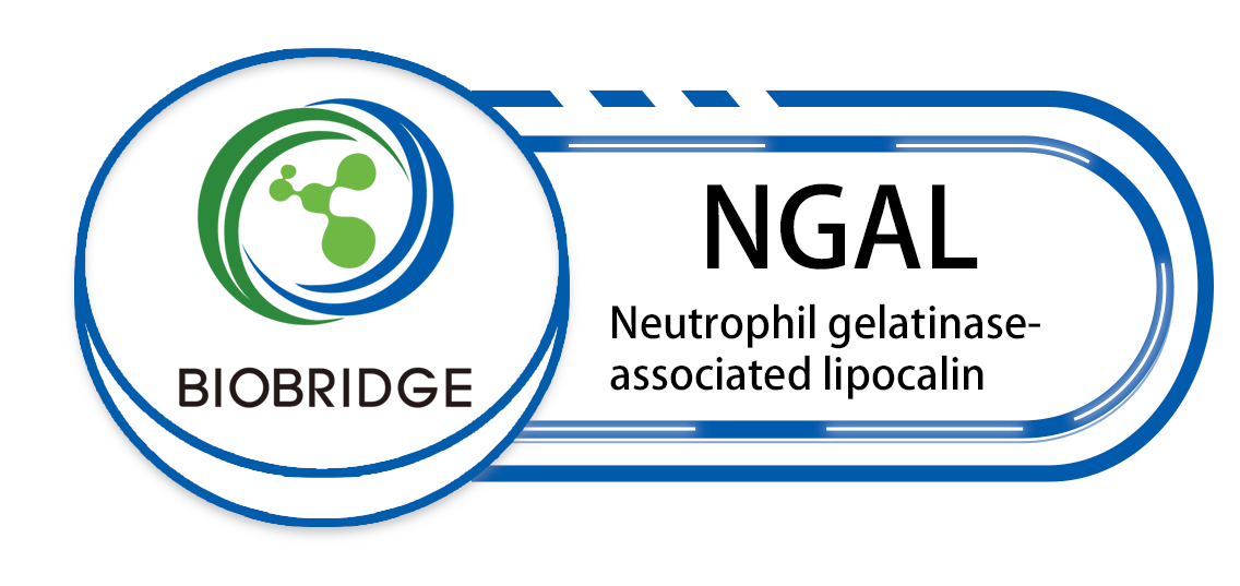 Neutrophil gelatinase related lipoproteins